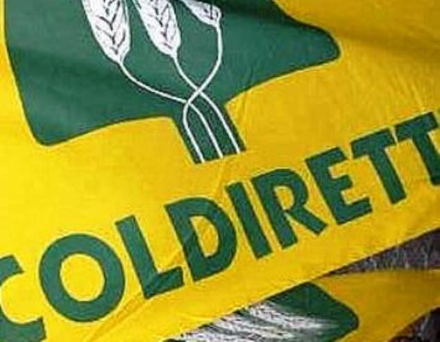"""Coldiretti applaude al decreto legislativo anti spreco. """"Una svolta storica"""""""