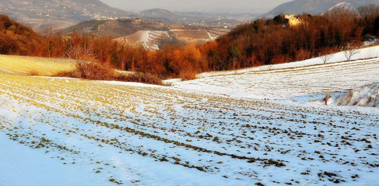 Camminate in collina per chi non teme gelo e neve
