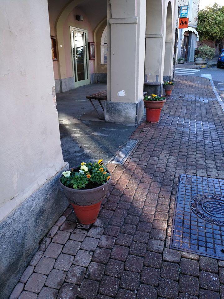 PECETTO – I volontari riordinano i vasi di fiori pubblici