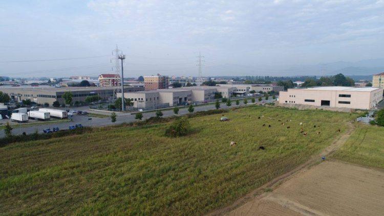 NICHELINO – Nasce un nuovo polo logistico da 200 posti di lavoro