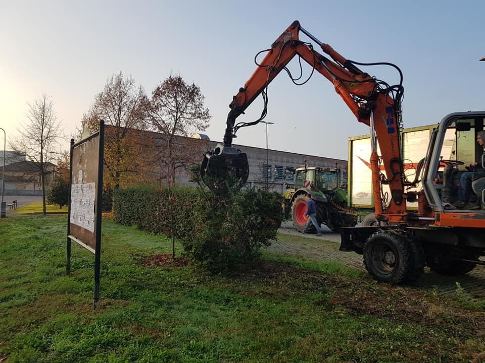 CARMAGNOLA – Riqualificazione ambientale: via alberi malati e riposizionamento siepi