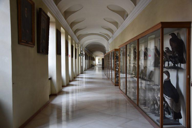 MONCALIERI – Apertura straordinaria del Real Collegio