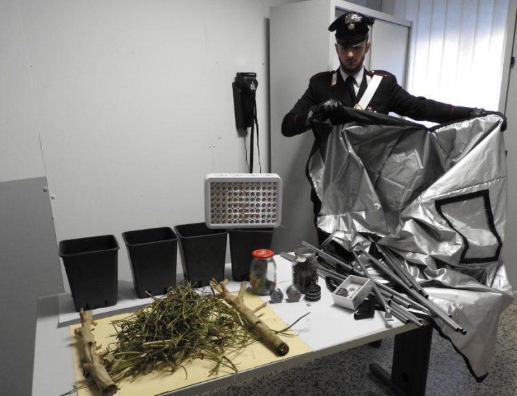 Padre e figlio denunciati per produzione di droga, dopo un controllo in una scuola di Moncalieri
