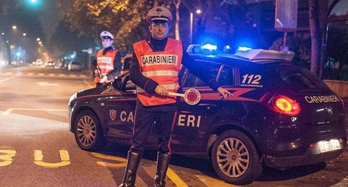 """I carabinieri """"pizzicano"""" un topo d'alloggio"""