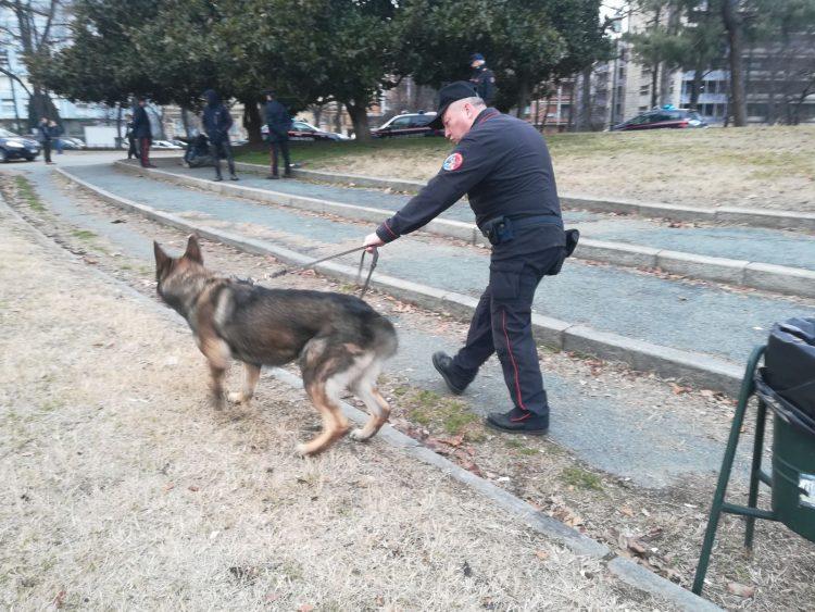 Maxi operazione antidroga al parco del Valentino a Torino