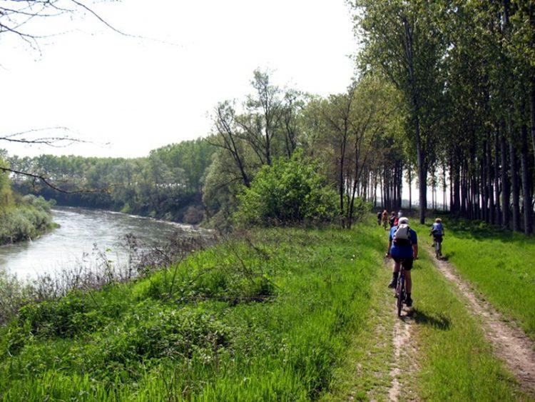 Via alla pulizia dell'alveo del fiume Po anche a Torino
