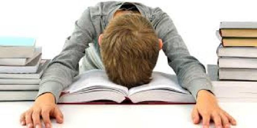 SCUOLA – Orientamento scolastico, c'è tempo fino al 28 agosto per le domande