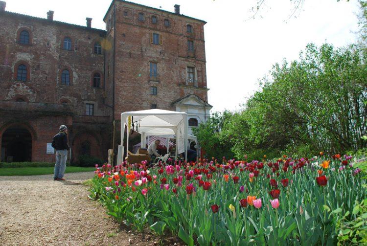 Presentato Messer Tulipano