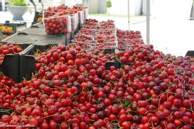 COLDIRETTI – Operazione verità a vantaggio della frutticoltura piemontese