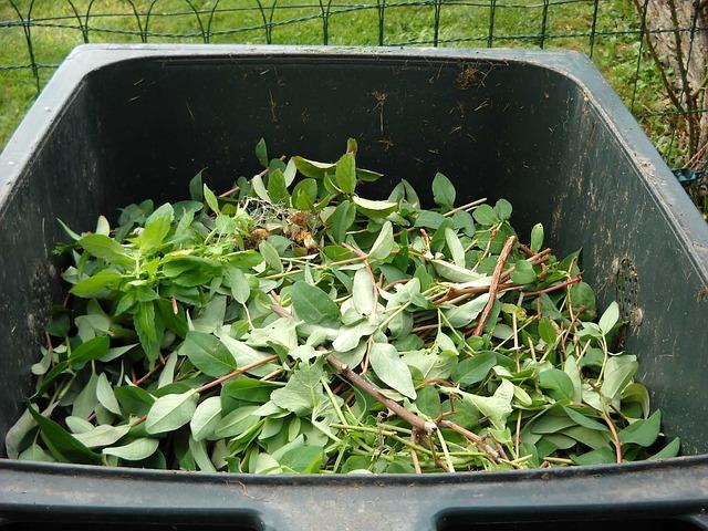 MONCALIERI – Rivoluzione nel servizio di raccolta dei rifiuti da giardino