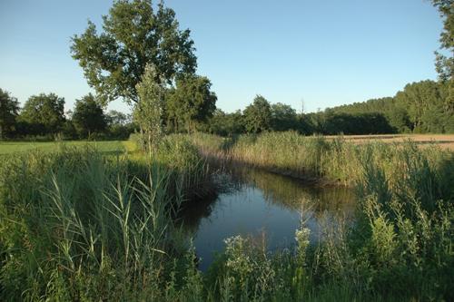 Stagni dei Favari tra le 27 aree protette del torinese