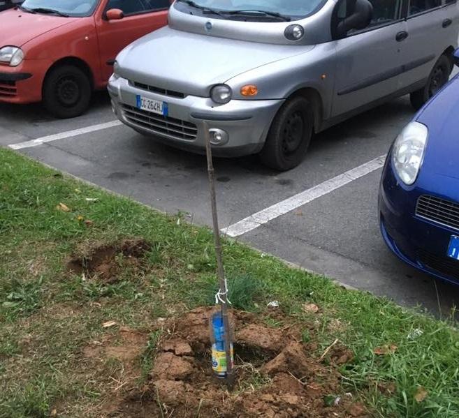 """MONCALIERI – I """"Badili Badola – Guerrilla Gardening"""", colpiscono in città"""