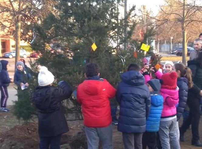 NICHELINO – Solidarietà al quartiere Kennedy con la nuova vita dell'albero di Natale
