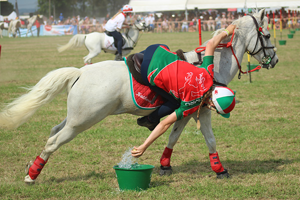 Equitazione: Cambiano e Trofarello in vista al Challenge Peter Dale