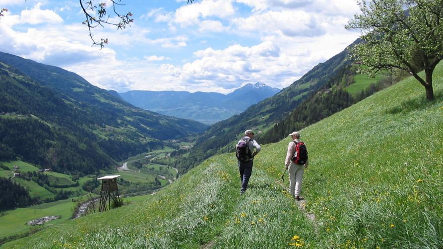 NATURA – Un concorso sulla Grande Traversata delle Alpi
